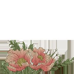 brighten-yourday-flower-csa
