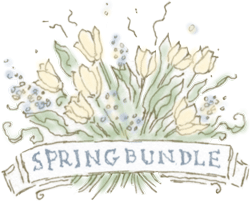 BWFSpringBundleCSA_Icon