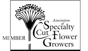 Association of Specialty Cut Flower Growers Member Logo